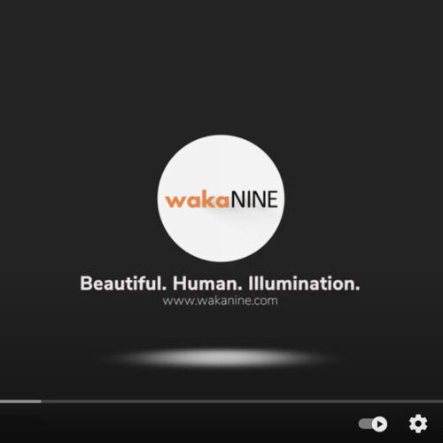 An Introduction to wakaNINE